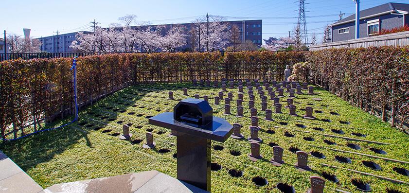 常楽院 樹木葬(自然葬)01