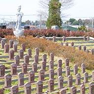 樹木葬(自然葬墓地)