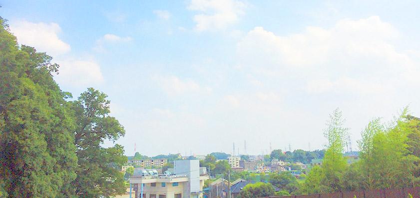 天照院 龍海寺風景