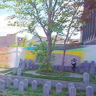 永代供養付樹木葬「新樹区」