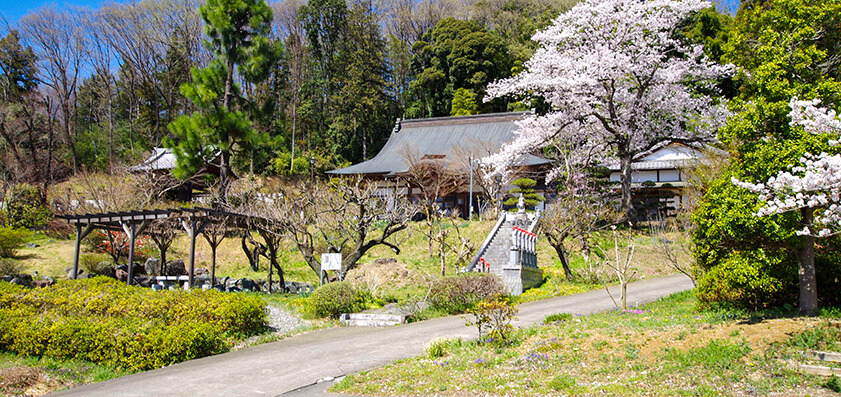 金澤寺 駐車場からの本堂