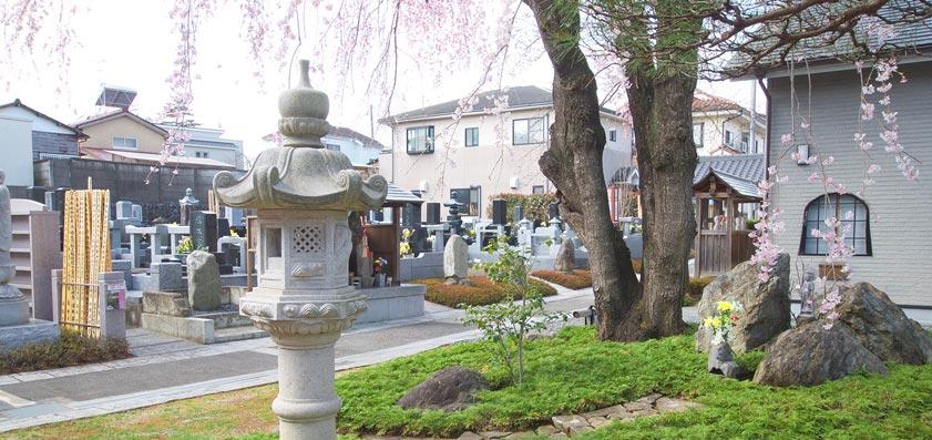 廣済寺 樹木葬(自然葬)「桜風苑」02