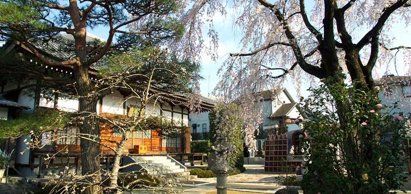 廣済寺 境内