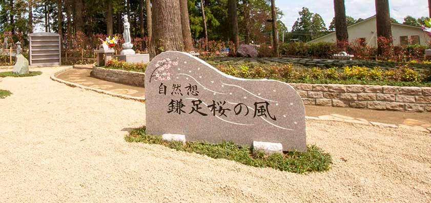 高倉観音・高蔵寺 樹木葬(自然葬)「鎌足桜の風」01