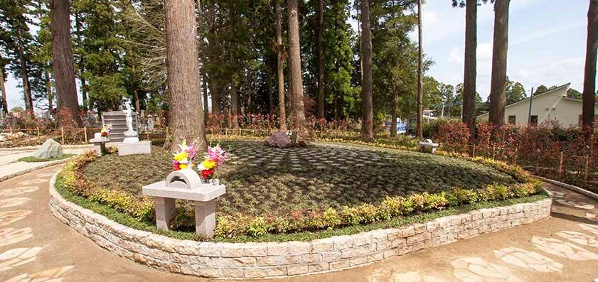 高倉観音・高蔵寺 樹木葬(自然葬)「鎌足桜の風」03