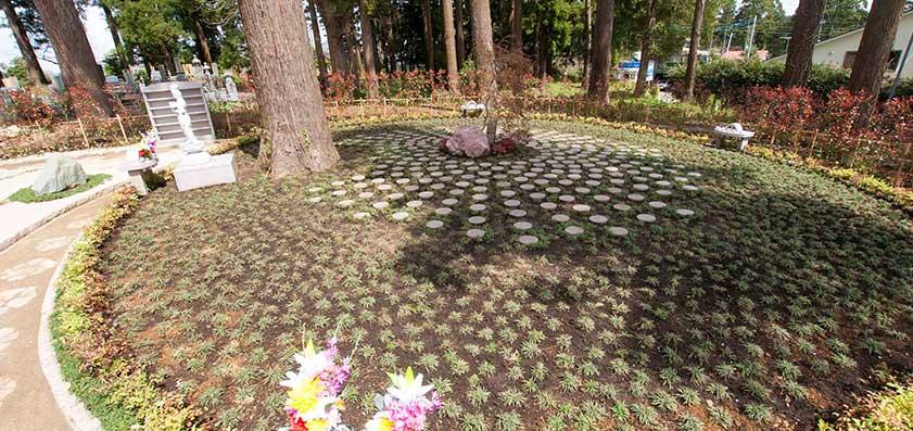 高倉観音・高蔵寺 樹木葬(自然葬)「鎌足桜の風」04