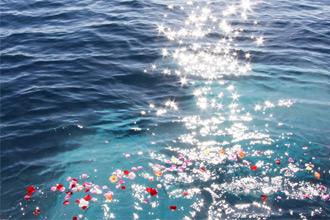 海洋葬をお考えの方へ