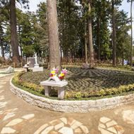 樹木葬(自然葬墓地)「鎌足桜の風」