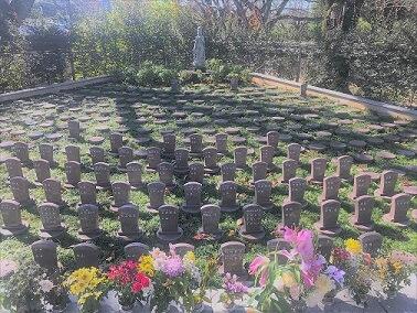 自然葬 延命寺