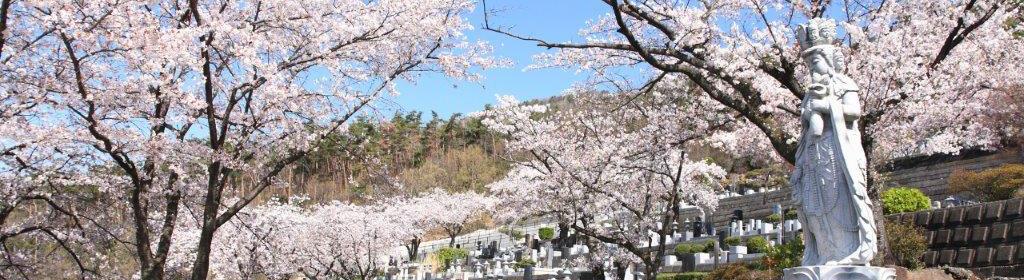 樹木葬に適した木(シンボルツリー)の種類とは