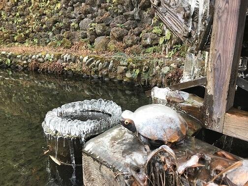 興福寺 池の水車