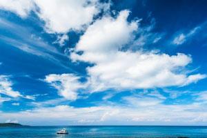 海洋葬の種類と費用の目安