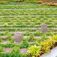永代供養付樹木葬