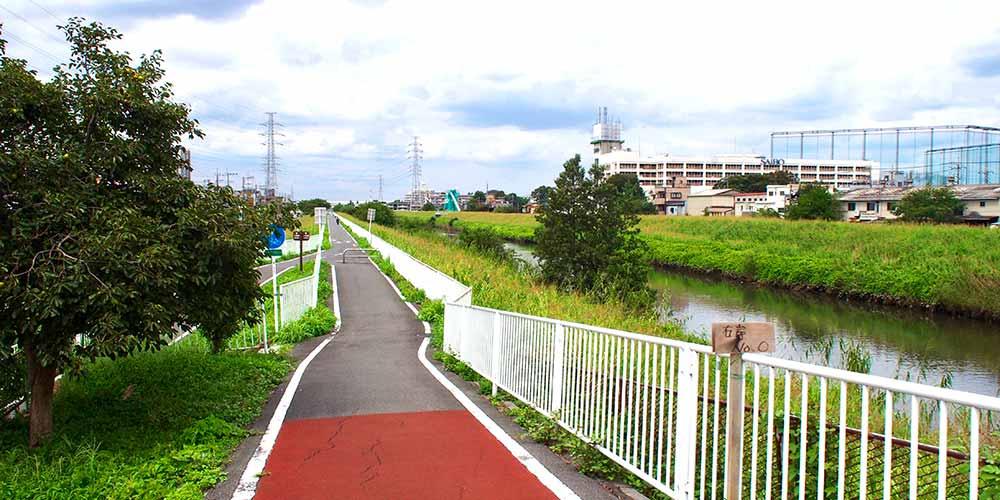 お散歩にも最適「芝川サイクリングロード」