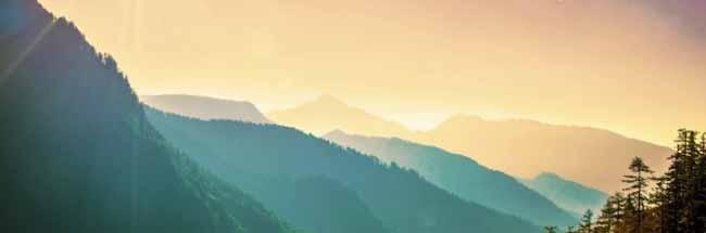 樹木葬はどの山がよい?場所選びのポイント