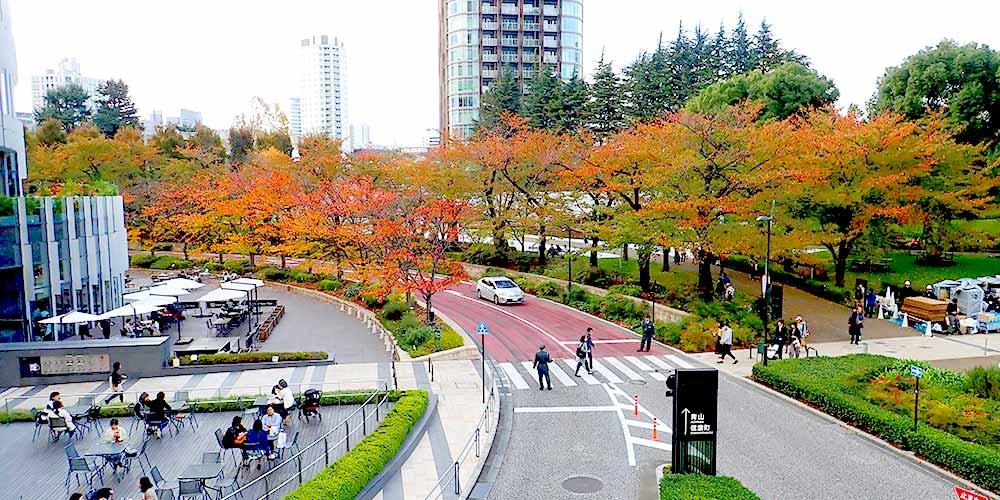 東京ミッドタウンの都会のオアシス「檜町公園」