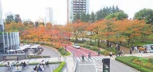 東京都港区赤坂「檜町公園」