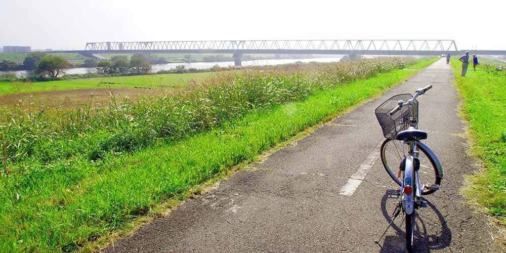 江戸川サイクリングロードで気分爽快!水と緑の街を散策