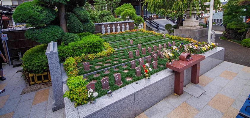 樹木葬 圓福寺 - 埼玉県