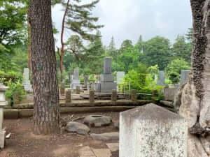墓じまいお見積り|多磨霊園 - 東京都府中市