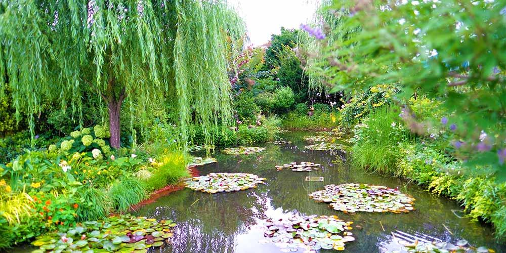 デパート屋上にモネの睡蓮?「食と緑の空中庭園」