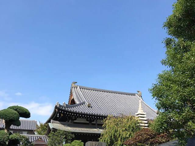 秋晴れ|圓福寺 埼玉県さいたま市