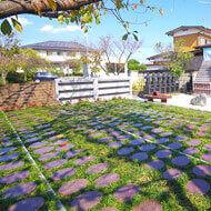 永代供養付樹木葬(自然葬墓地)