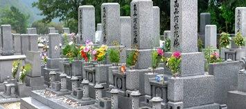 新しいお墓の種類を解説!いま墓じまいする人が増えています
