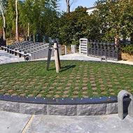 永代供養付樹木葬墓(自然葬墓地)