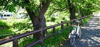 川越の歴史散策するならサイクリングで!