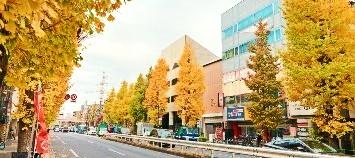 新高円寺に構える「修行寺」の墓参りにおすすめの店-新高円寺Vol.1