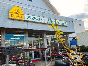 供養花は、圓福寺から徒歩約15分「FLORIST  IWASAKI」