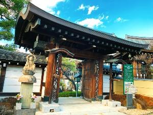 500年以上の歴史がある「圓福寺」